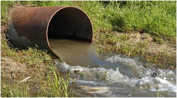 Delitos Ambientales Crímenes Contra la Humanidad